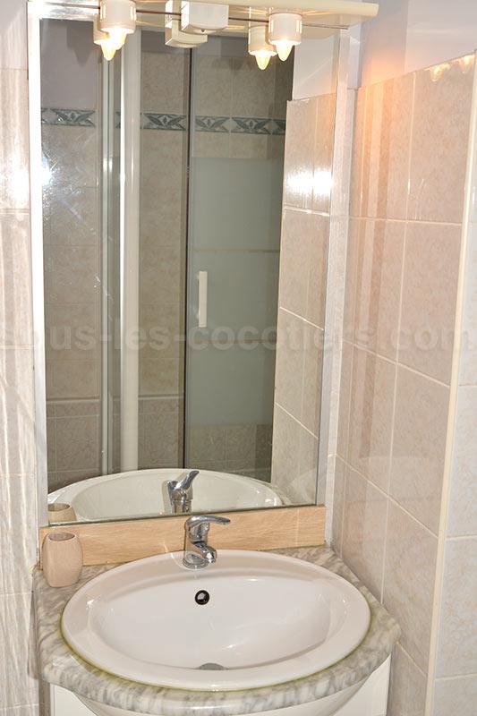 une salle de bain est équipée d une vasque